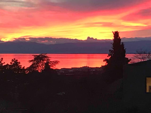 Vast 4 rooms with view and spa in Montreux area