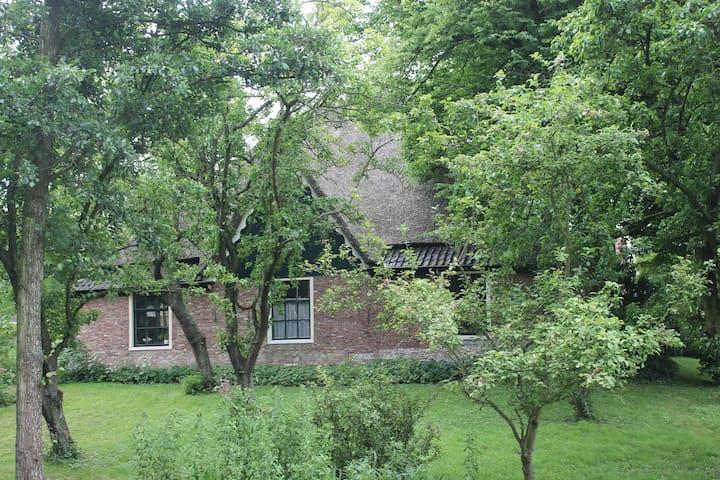 """B&B """"De Stolp"""" - Alkmaar - Bed & Breakfast"""