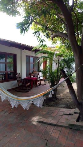 Ambiente cálido bajo árboles frutales de mango