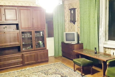 Vintage appartment for friends - 基辅 - 公寓