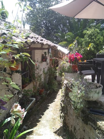 Private house in magnificent garden o Kikimba .