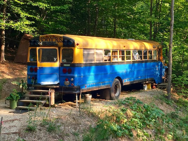 Schoolbus in the Woods