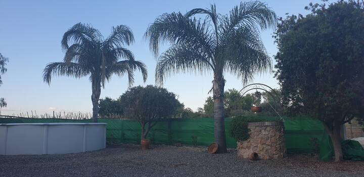 Mirador de los Llanos