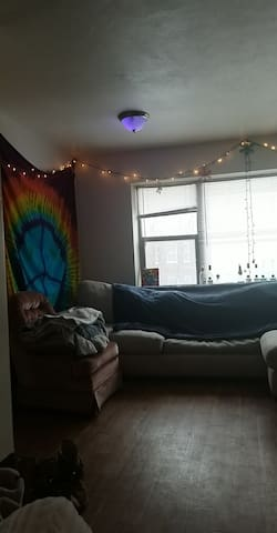 Minneapolis Apartment Under 1 mile from Super Bowl
