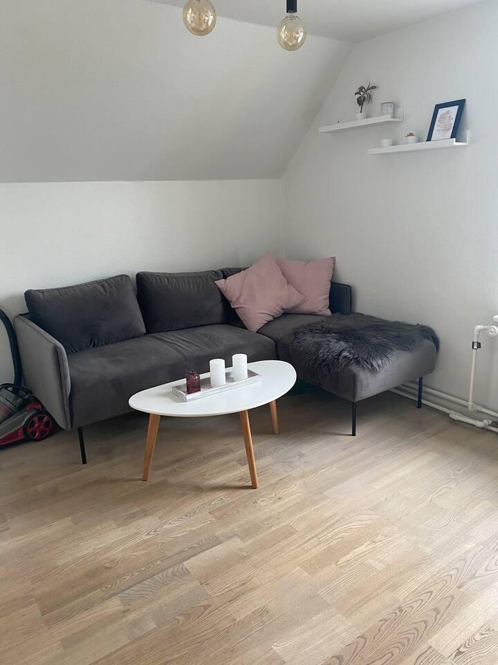 Hyggelig lejlighed tæt på Aalborg Centrum