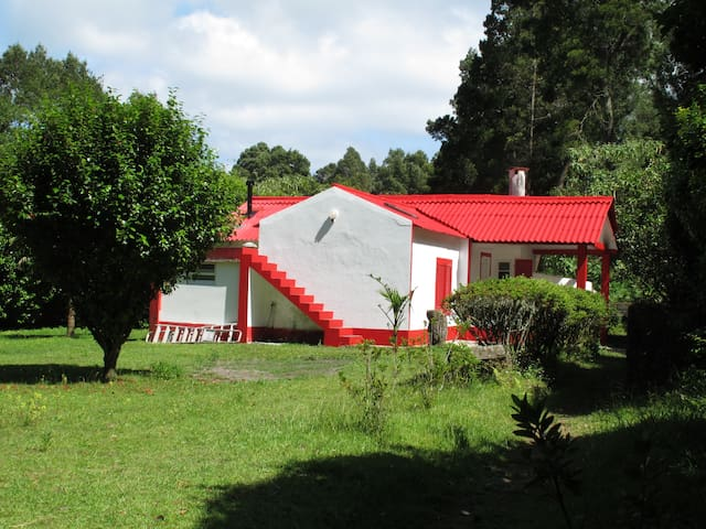 Casa na Margem da Lagoa das Furnas - Furnas - Ev