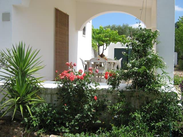 Lovely, quite, countryside house - Ostuni - Villa
