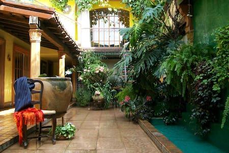 Your Host Inn B&B - Rufino Tamayo - Cuernavaca