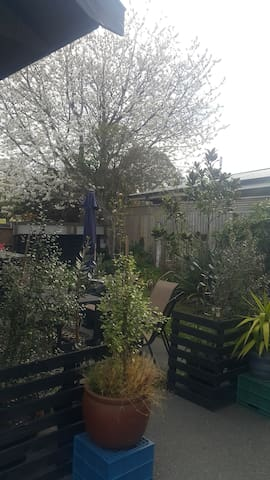 Burnside by the Park - Christchurch - Casa