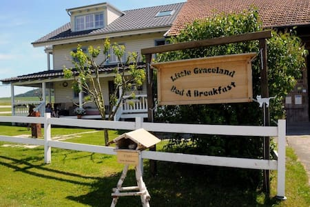 Little Graceland.. - Bed & Breakfast