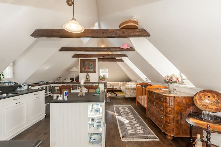 Glamorous Loft 5' from Prague Castle  w/ Breakfast
