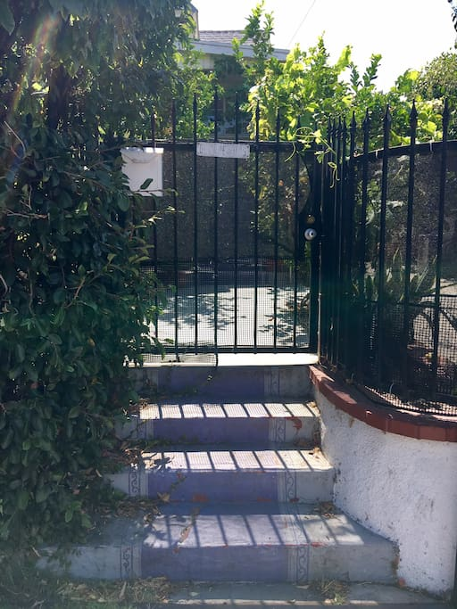 the house number is covered in vines so look for the purple stairs- and there is no dog so come on in.