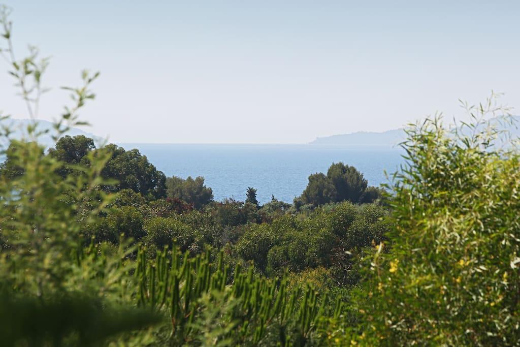 Appartement Le Lavandou Vue Mer