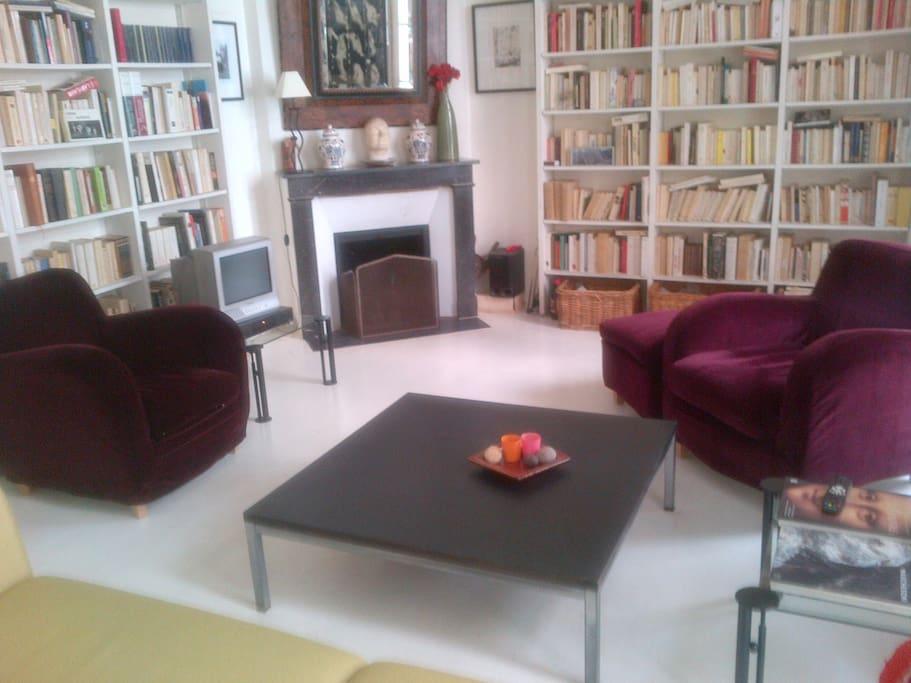 Salon/livingroom and fireplace