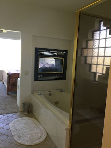Master bedroom Jacuzzi and Fireplace