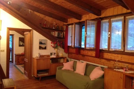 Cadore I Like Attic - Santo Stefano di Cadore - Apartment