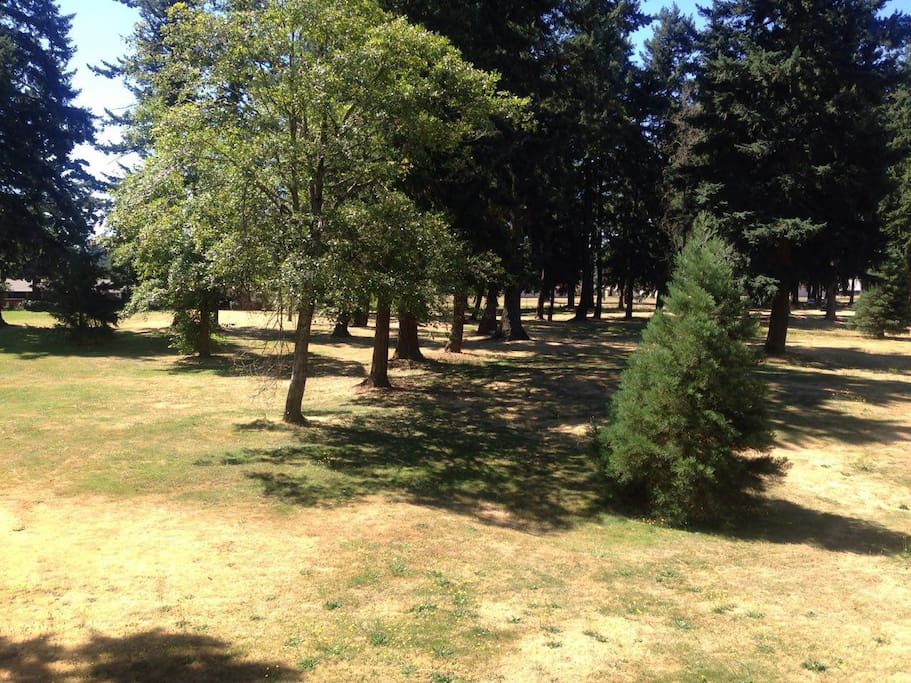View of Park from Bedroom (Note Grass is Usually Much Greener!)