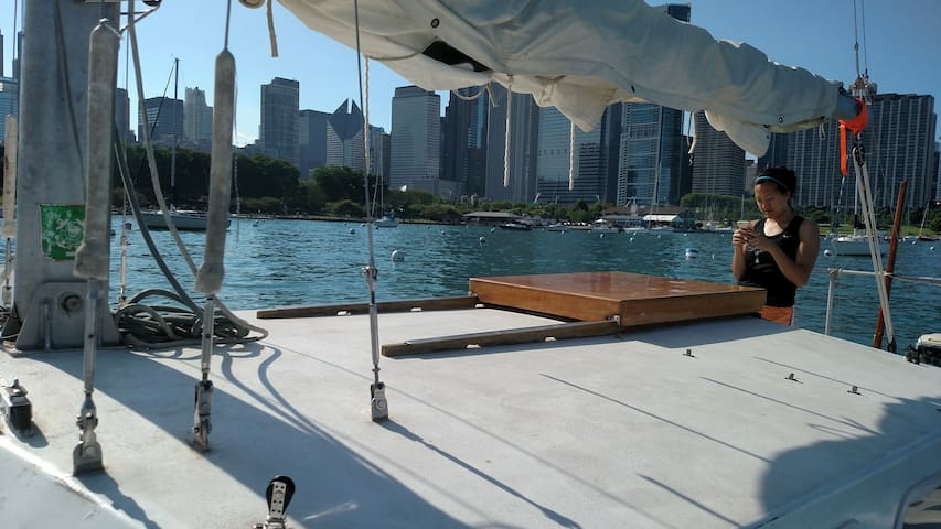 Sailboat Downtown - Chicago - Barco