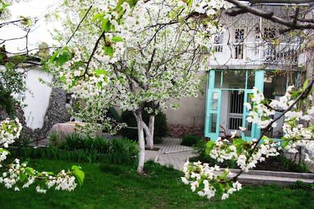 Southside Guesthouse  - Bişkek - Oda + Kahvaltı