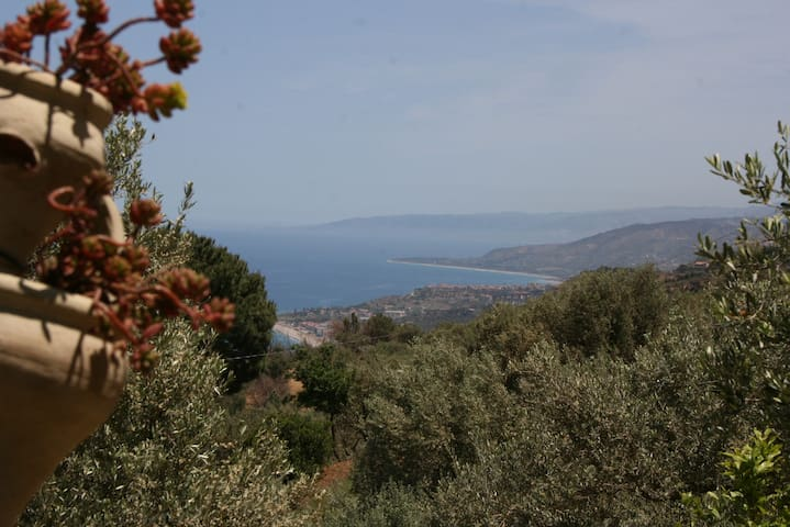 Amandine ago 2019 If you visit Sicily, this place is a must. The bungalow is charming and peaceful, you will be well welcome with a comfortable private bungalow, and homemade delicacy in the fridge.  ! One of the best food we had during the stay :-)
