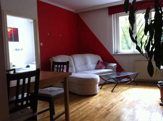 Cosy apartment near Schönbrunn - Vienna - House