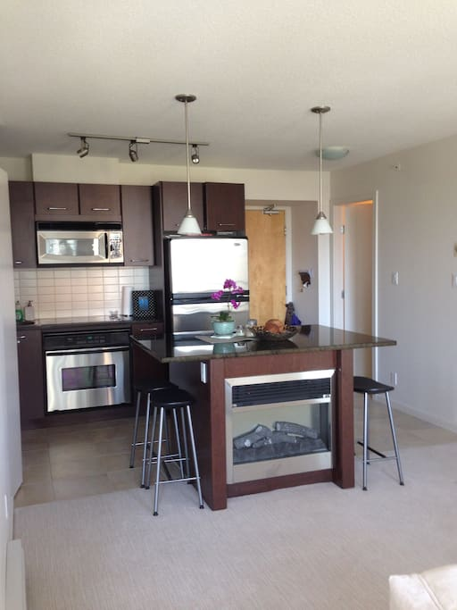 stainless steel appliances and fireplace