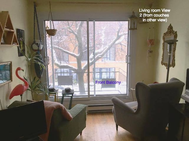 ROOM-cozy,older Little Italy apt sept-dec 735month