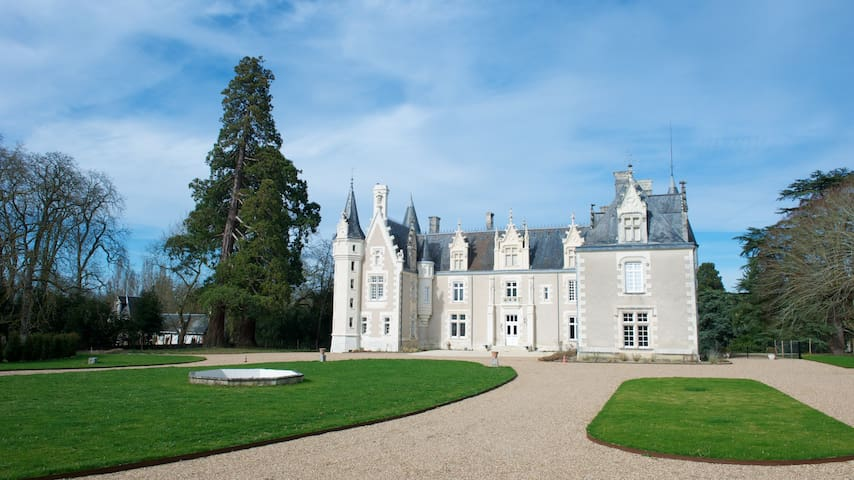 Bed and Breakfast at the castle - Azay-sur-Cher - เกสต์เฮาส์