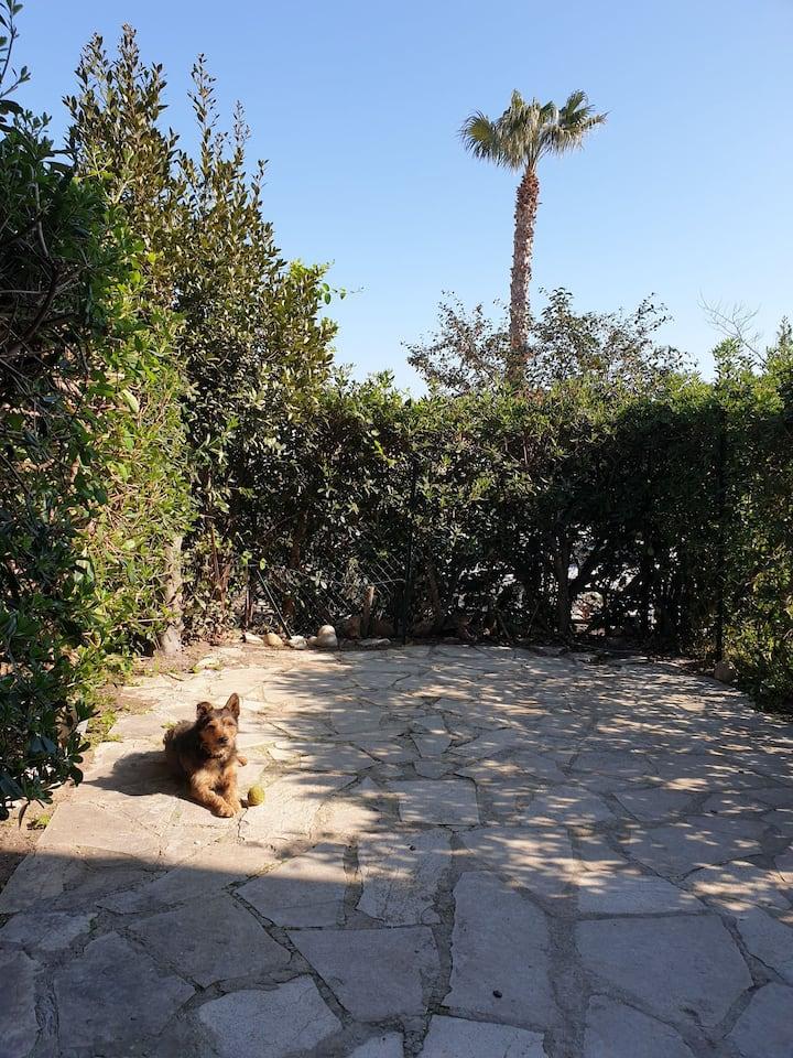 Giens,spacieux et moderne T2 45m² terrasse jardin