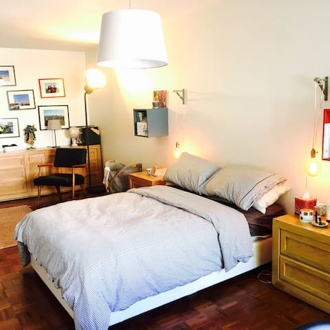 Amazing and cosy room in a house - Brooklyn - House