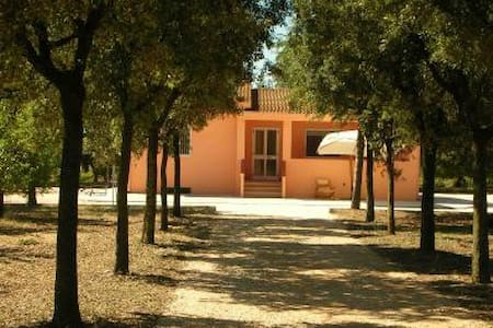 Country house surrounded by oranges - Bernalda