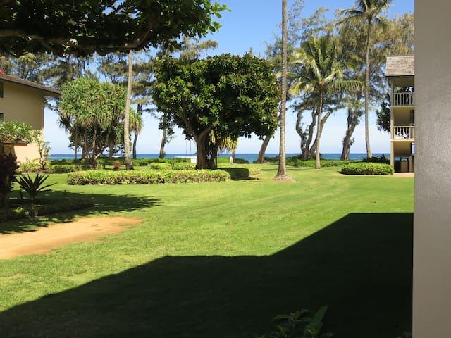 Kauai Ocean View Condo #115
