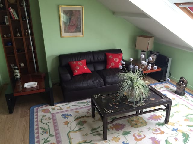 Beautiful big room on private floor - Châtenay-Malabry - House