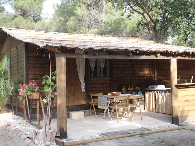 Lovely cottage Le Racou Argeles/Mer