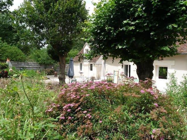 Longère proche beauval et chateaux - Meusnes - House