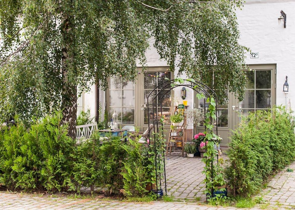 Green and lush patio garden