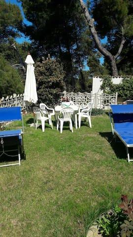 Villa Rosy - Montesilvano - Bed & Breakfast