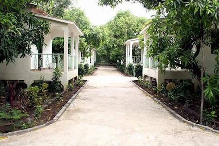 Beyond Stay Gir Garjana The Cottage