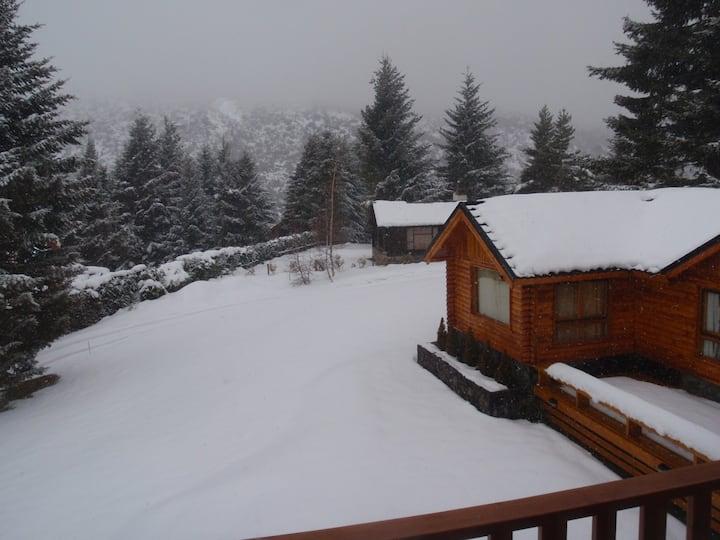 Cozy and confortable Bariloche
