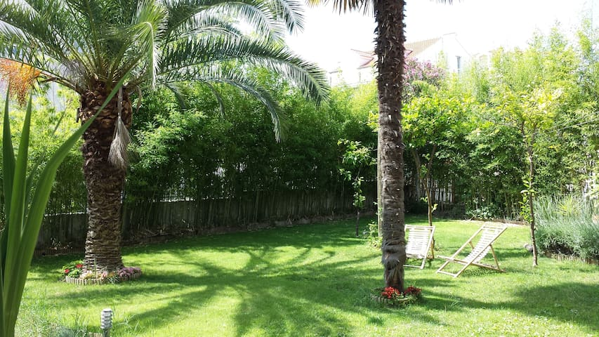 Beautiful 200 square meter garden in front were you can sit and drink coffee in the morning.