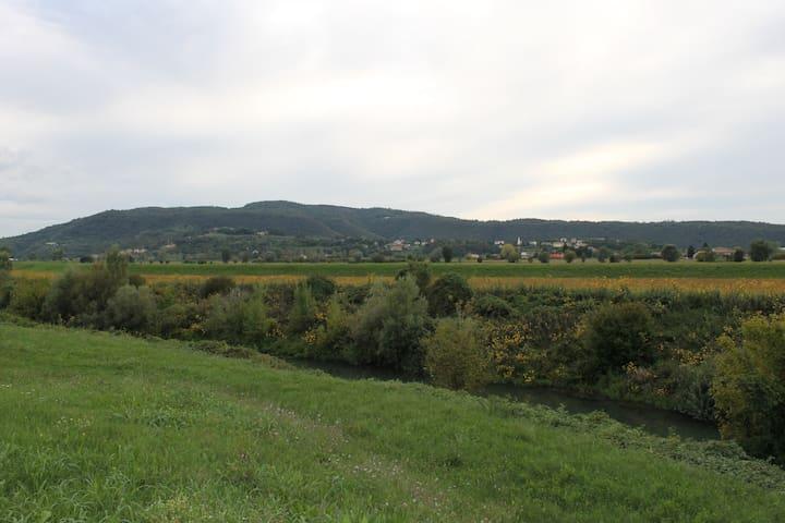 Panoramica Colli Berici
