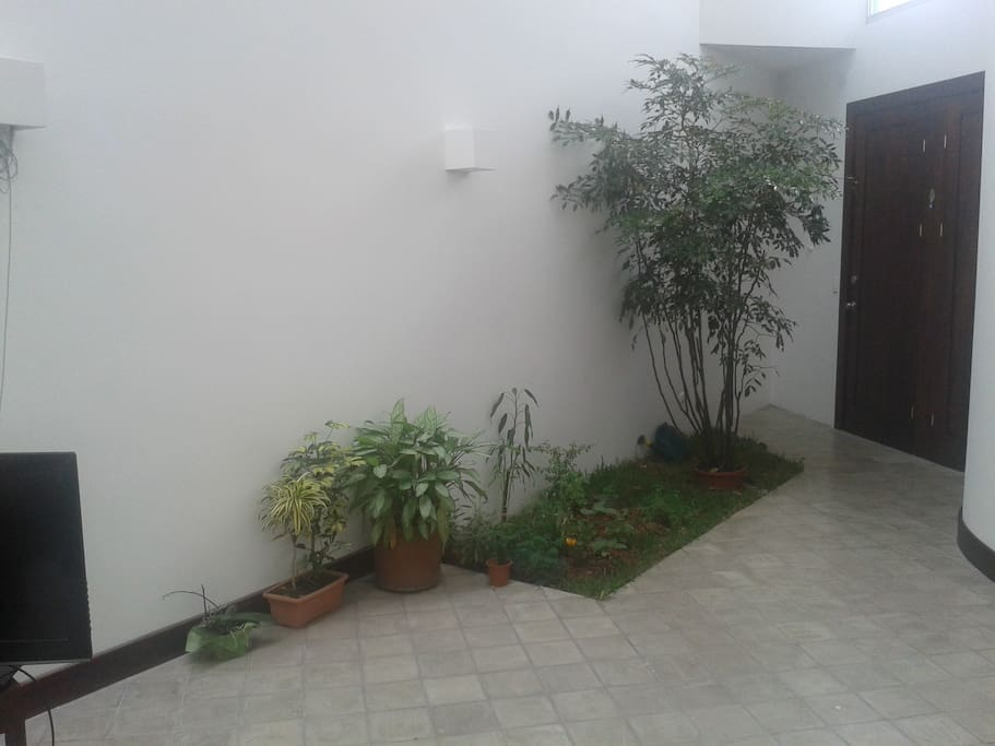 our inside garden ... permaculturalist are always wlecome we still struggle