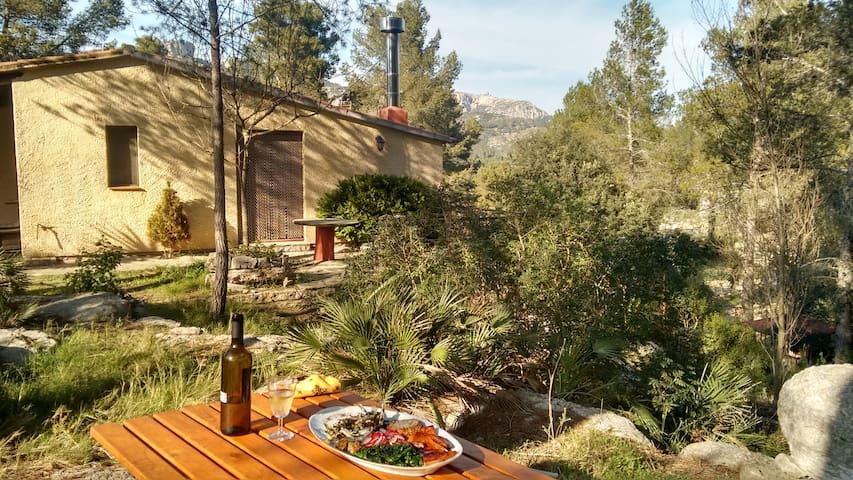 7 Soles en la Naturaleza: Conecta Contigo Mism@ - Santa Marina - Casa particular