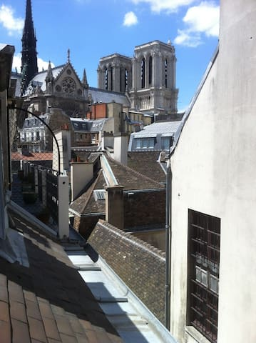 Direct view of Notre Dame Cathedal - Paris - Apartment