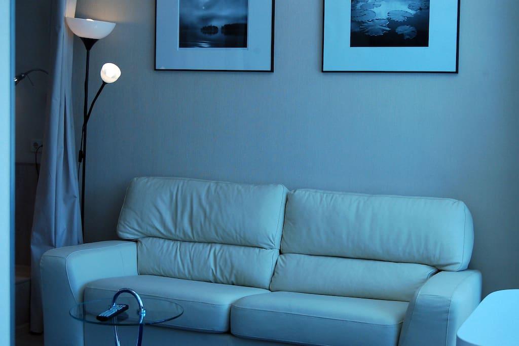 раскладной кожаный диван на двоих