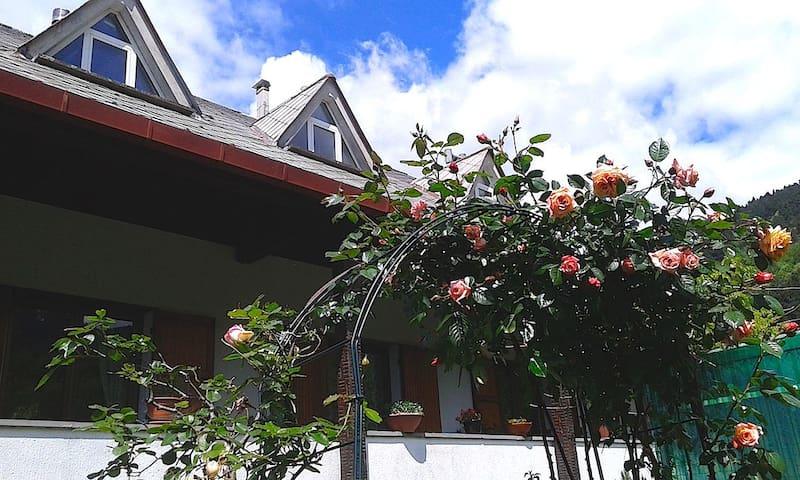Bilocale Verde A 2 passi dall'Alta Via - Borzonasca - Wohnung