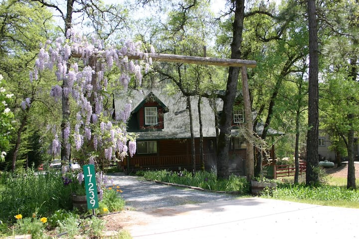 Log Home, Spa, Swimming Hole - Grass Valley - Rumah