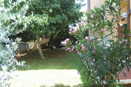 Lovely apartment in Elba Island - Capoliveri