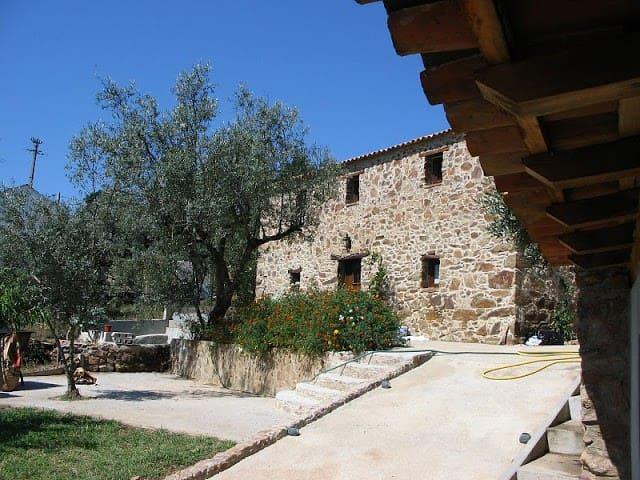 Casa das Oliveiras country house - Maçãs de Dona Maria - Willa