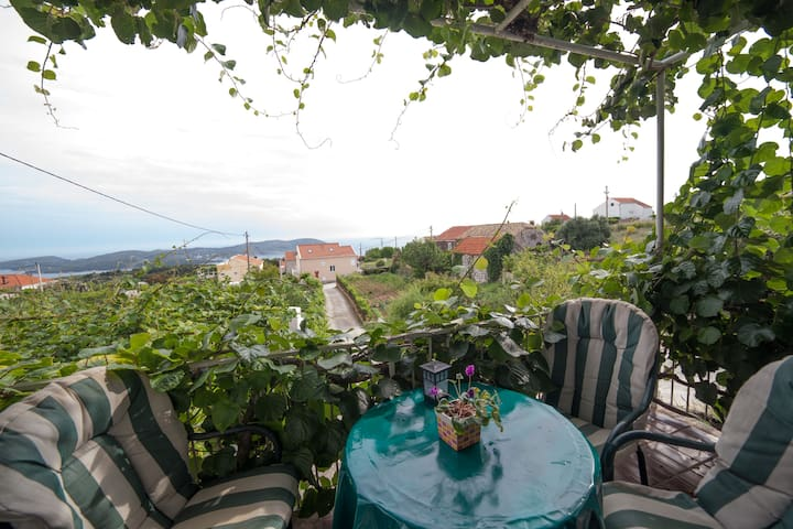 Holiday house near Dubrovnik - Orašac - 獨棟